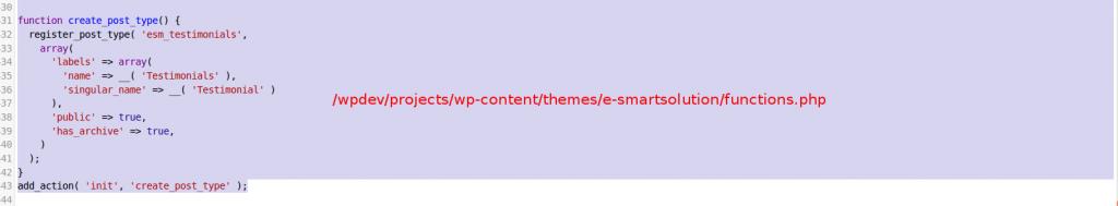 wp custom post type
